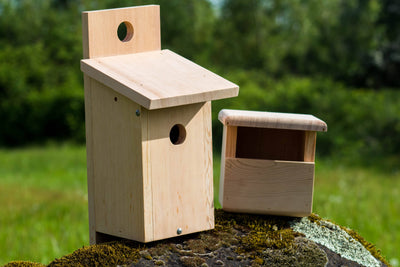 Birdhouses made from Douglas Fir