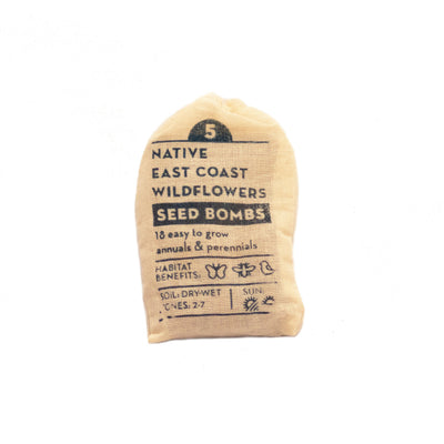 East coast wildflowers regional seedbomb