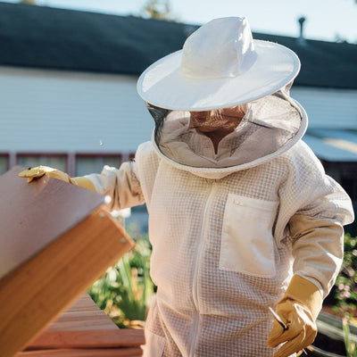 ventilated full body bee suit