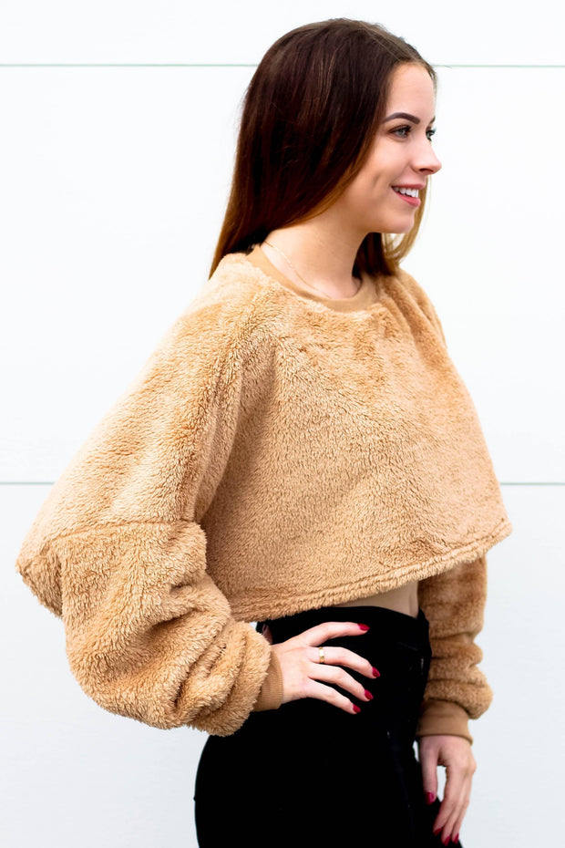 Top - Teddy Batwing Cropped Top Jumper In Mocha