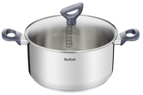 Tefal Daily Cook Stainless Steel Induction Stewpot 24cm/5.2L