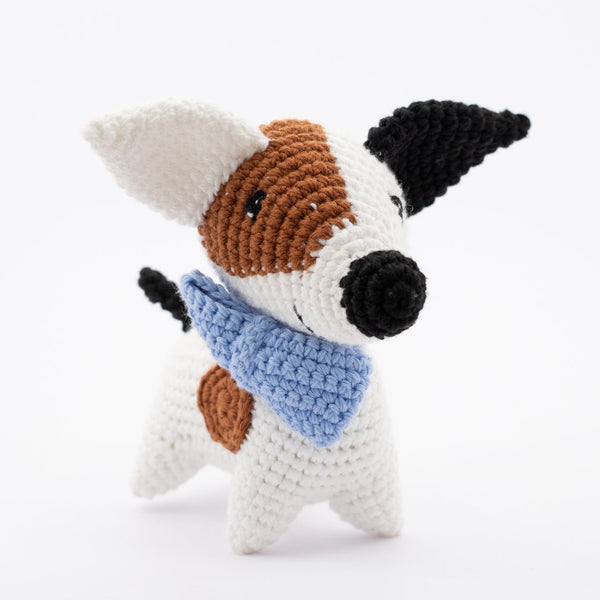 Daniel the Jack Russell