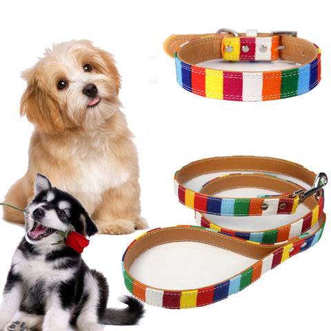 Dog Harne Leash Set Pet Vest Lead For Small Meduim Large Dogs Perfect For Daily Training Walking | Edlpe