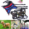 Image of Leash Pet Dog Puppy Cat Soft Adjustable Harness Vest Chest Strap Braces Clothes | Edlpe