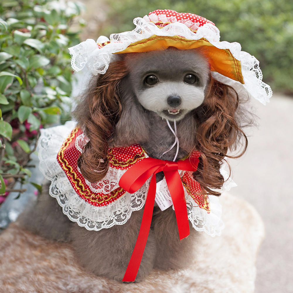 Dog Dress Pet Princess Suit Vintage Lady Style Costumes Clothing Cloak Hat Wig | Edlpe