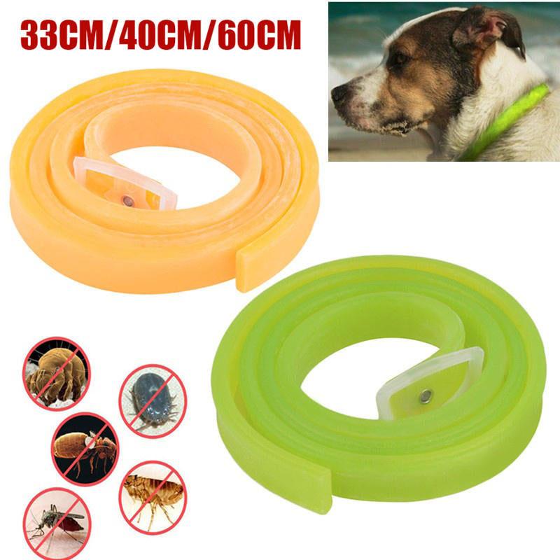 Dog Cat Repel Tick Flea Adjustable Kill Remover Pet Protection Aroma Neck Collar | Edlpe