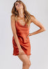 Image of Sexy Sling Backless Satin Sleeping Dress Night Out Party Dress | Edlpe