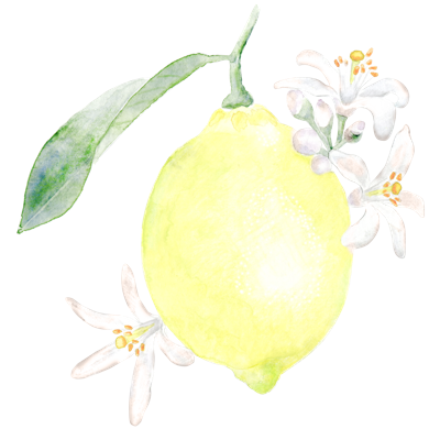 //cdn.shopify.com/s/files/1/2024/5685/files/lemon.png?v=1588932061