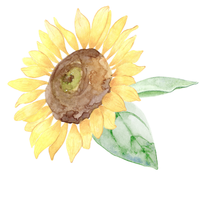 //cdn.shopify.com/s/files/1/2024/5685/files/sunflower.png?v=1588939416