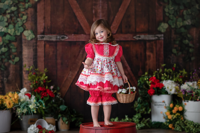 Misha Strawberry 2 ways dress 4pcs set