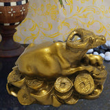 Divya Mantra Wealth Cow