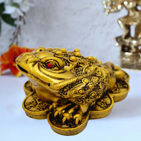 Divya Mantra Feng Shui King Money Frog Brass Finish - Divya Mantra