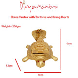 Divya Mantra Shree Yantra with Tortoise and Naag Devta - Divya Mantra