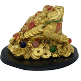 Divya Mantra King Money Frog Showpiece
