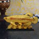Divya Mantra Feng Shui Golden Arowana on Bed of Wealth for Health, Wealth & Positivity - Divya Mantra