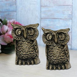 Divya Mantra Set of Two Feng Shui Owl Statue Showpiece - Divya Mantra