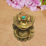 Feng Shui King Money Frog - Divya Mantra