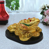 Divya Mantra Feng Shui Three Legged Money Toad for Fortune - Divya Mantra