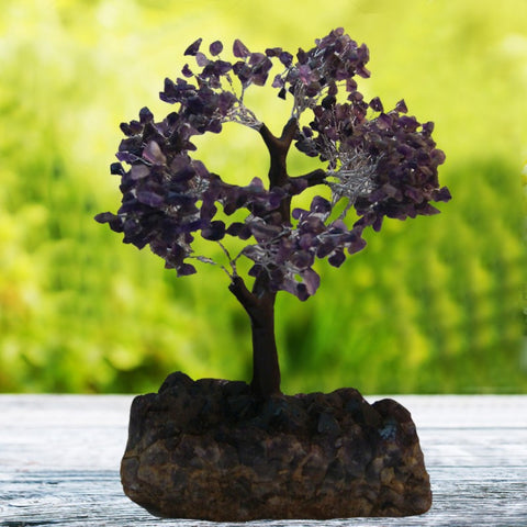 Divya Mantra Feng Shui Amethyst Gem Tree On Amaethyst Rock - Divya Mantra