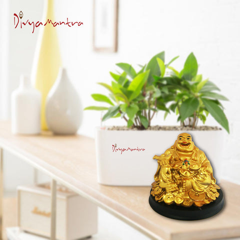 Divya Mantra Happy Man Laughing Buddha Holding Ingot Statue For Attracting Money Wealth Prosperity Financial Luck - Divya Mantra