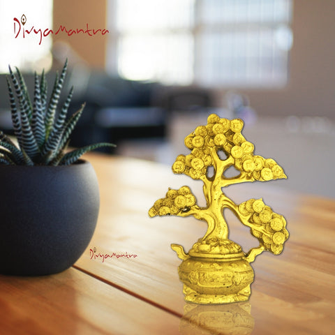 Divya Mantra Feng Shui Coin Wealth Money Tree For Abundance Financial Prosperity Luck - Divya Mantra