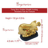 Divya Mantra Feng Shui Golden Wealth Inviting Arowana Fish for Fortune