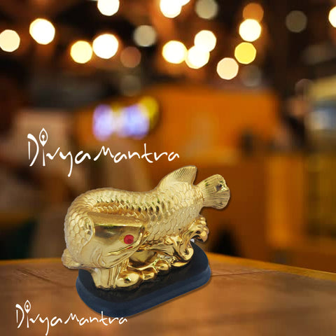 Divya Mantra Feng Shui Prosperity Arowana Dragon Fish with Stand Potent Energizer of Chi Wealth Indian Gift, Office Decor, Business, Home, Showpiece, Decorative, Item/Product-Money, Good Luck - Golden - Divya Mantra