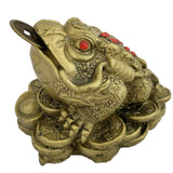 Divya Mantra Feng Shui King Money Toad Three Legged Frog on Wealth Bed in Brass Finish For Prosperity Financial Business Good Luck