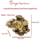 Divya Mantra Feng Shui King Money Toad Three Legged Frog on Trunk up Elephant For Prosperity Financial Business Strength Success Good Luck - Divya Mantra