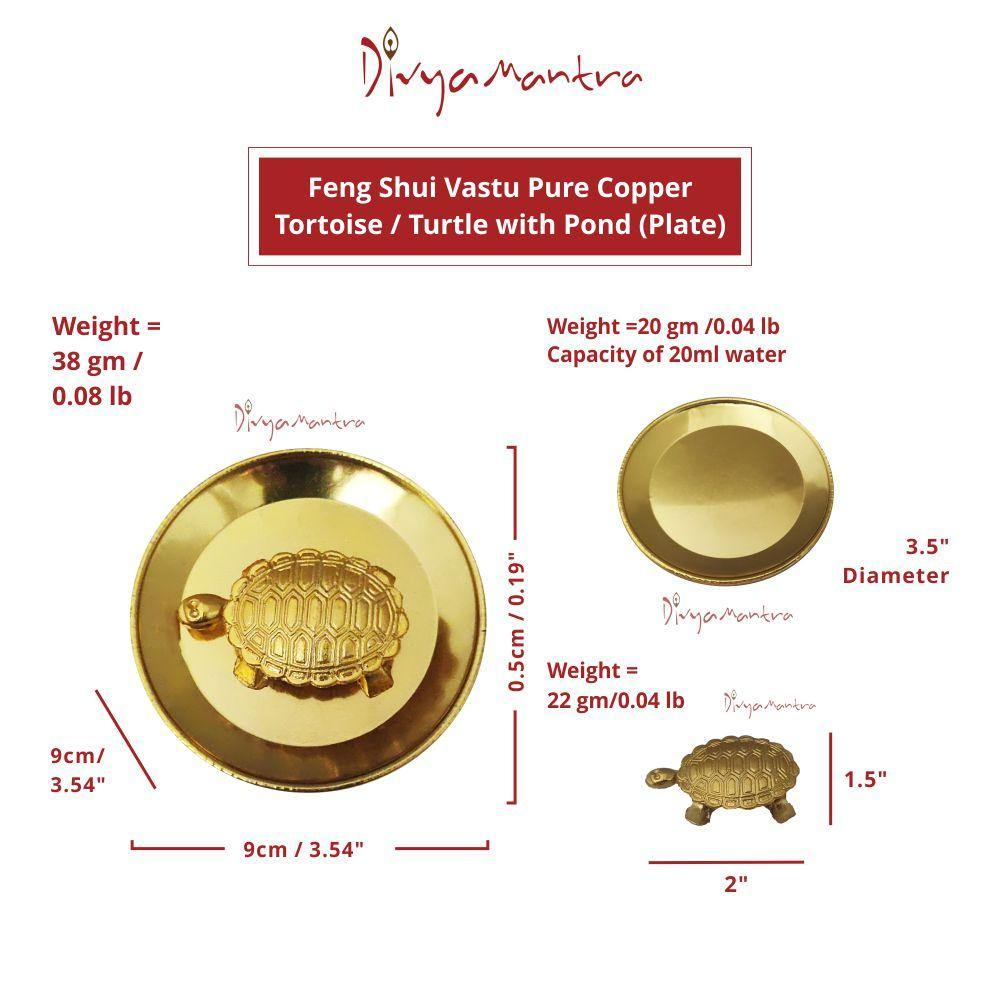 Brass Turtle and Plate Feng Shui//Vastu for Healing longevity and good fortune