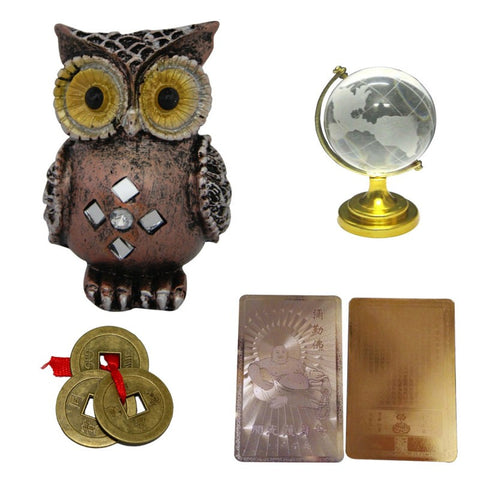 Divya Mantra Feng Shui Combo Pack of Colourful Owl, 3 Chinese Coins for Wealth & Goodluck, Buddha Gold Card and Globe - Divya Mantra
