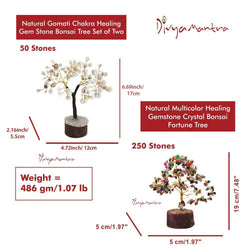 Divya Mantra Feng Shui Multicolor Crystal Bonsai Fortune Tree & Natural Gomati Chakra Healing Gem Stone Vastu Plant; Good Luck, Wealth, Success & Prosperity; Home Office Table Decor Gift Item Set