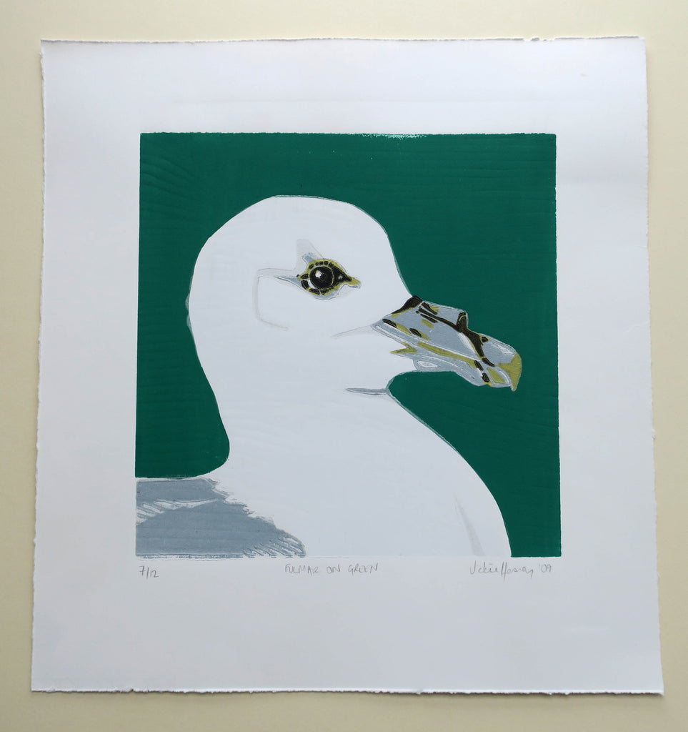 Fulmar on Green