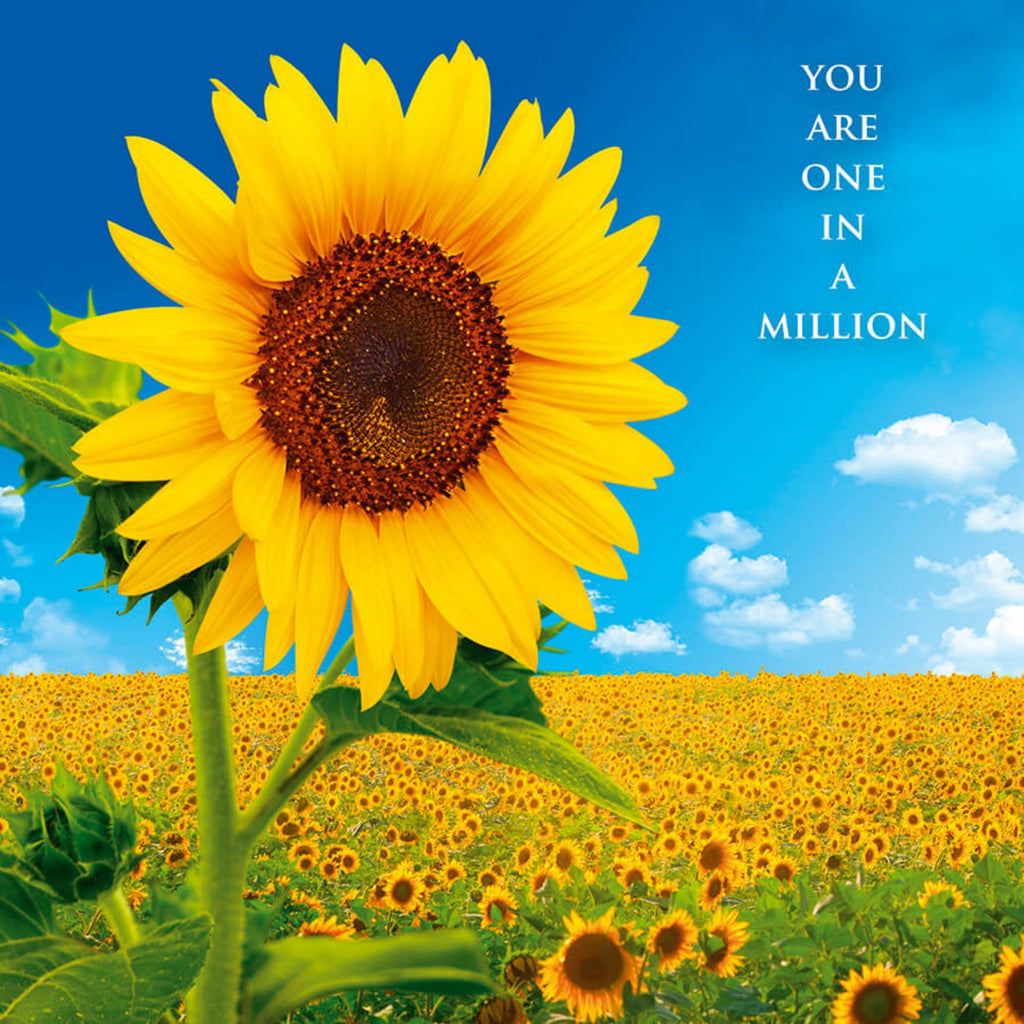 Inspiration Cards - Sunflower