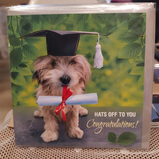 Hat's off- graduation card