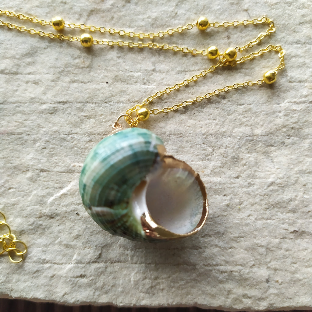 Winkle Shell Green Necklace
