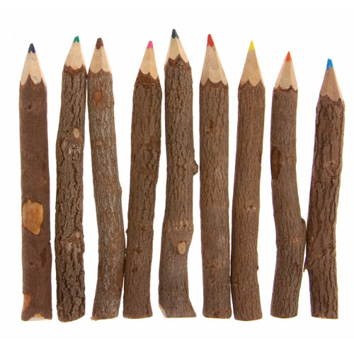 Twig colour pencils. pack of 10, 18cm