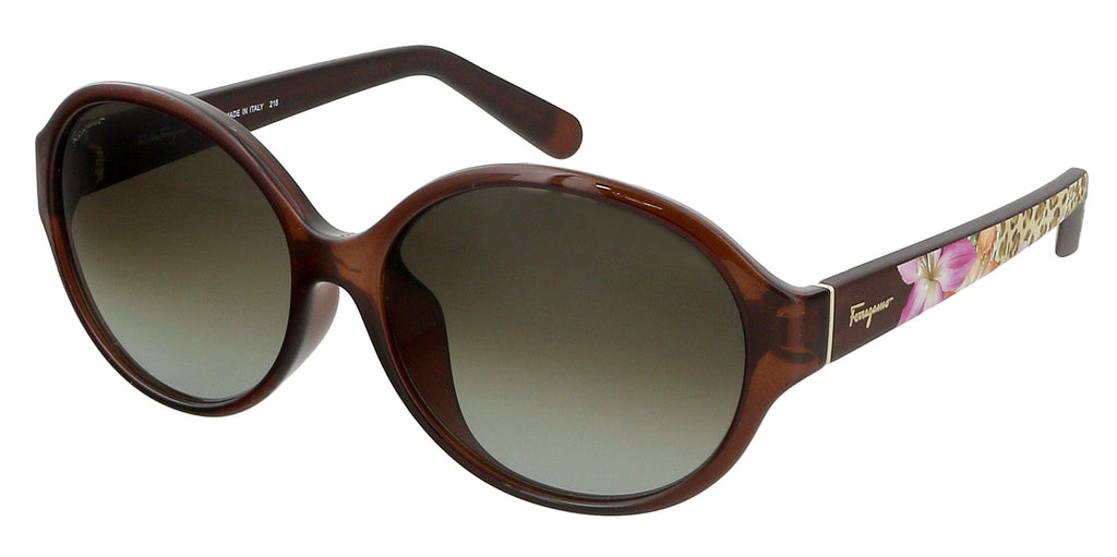 Salvatore Ferragamo  Brown  Oval Sunglasses salvatore ferragamo ferragamo sunglasses women salvatore ferragamo sunglasses women ferragamo sunglasses men sunglasses ferragamo women mens ferragamo sunglasses ferragamo mens sun glassesfor women salvatore ferragamo frames ferragamo glasses for men elegant sunglasses for women sunglasses for men ferragamo salvatore ferragamo sunglasses male