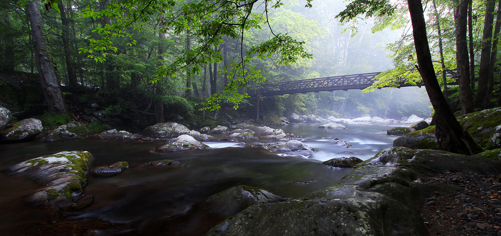 8 Best US Places To Go Camping In 2018 - Big Creek Campground, Great Smoky Mountains National Park