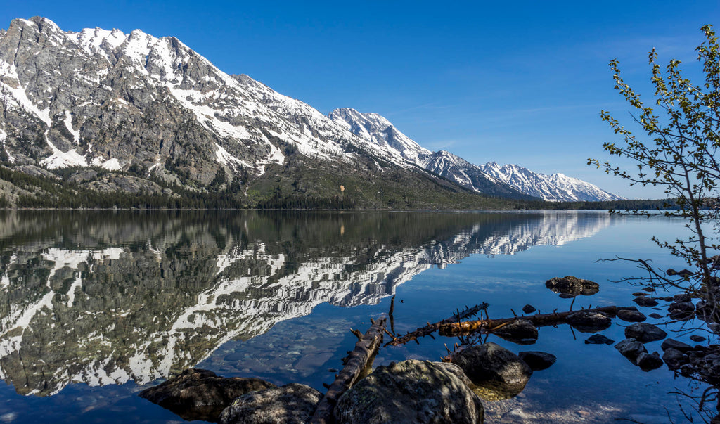 8 Best US Places To Go Camping In 2018 - Jenny Lake Campground, Grand Teton National Park