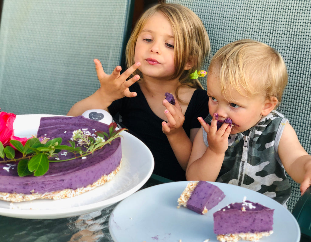 immune boosting recipes by tanya maher _ lake and banks maher _ raw blueberry cheesecake