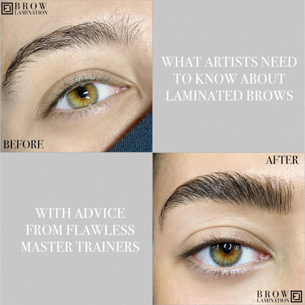 What Artists Needs To Know About Laminated Brows