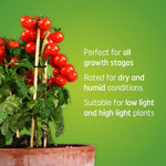 BR30 LED Grow Lights for Indoor Plants, Full Spectrum, 15-Watt Grow Light Bulb, Plant Light Bulb with Balanced Lighting for Seeds and Greens