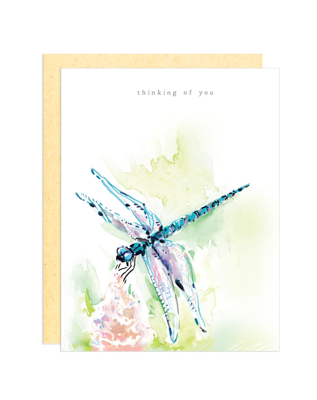 Thinking of You, Dragonfly