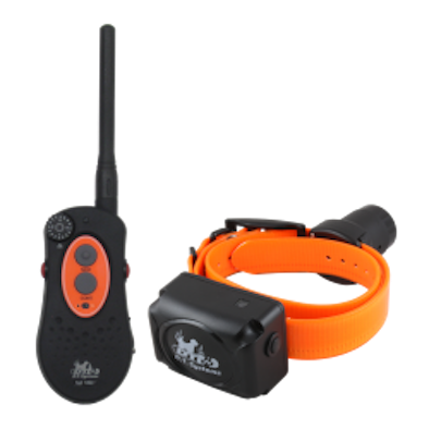 D.T. Systems The H20 1850 is DT's Mid level Beeper Trainer combo,