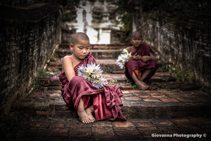 Young Monks with Lotus Flowers