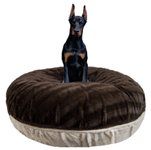 Bagel Bed - Natural Beauty and Godiva Brown