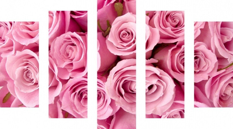 MacJac Art 5 Panel CANVAS Pink Roses Theme Wall Art Photography Prints Model 5PC-AL-0404