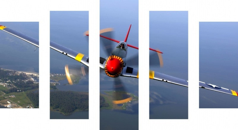MacJac Art 5 Panel CANVAS Mustang in Flight Theme Wall Art Photography Prints Model 5PC-AL-417131