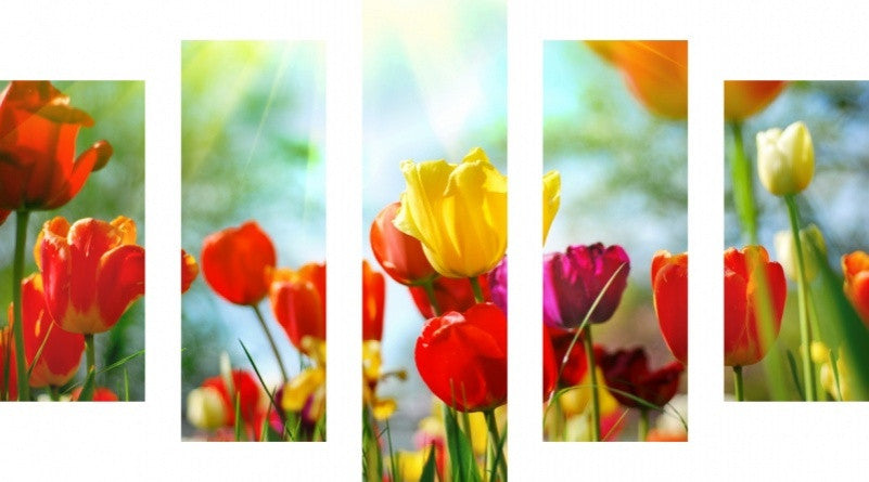 MacJac Art 5 Panel CANVAS Spring Flowers Theme Wall Art Photography Prints Model 5PC-AL-0405